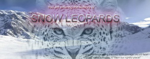 Snow Leopards Clan
