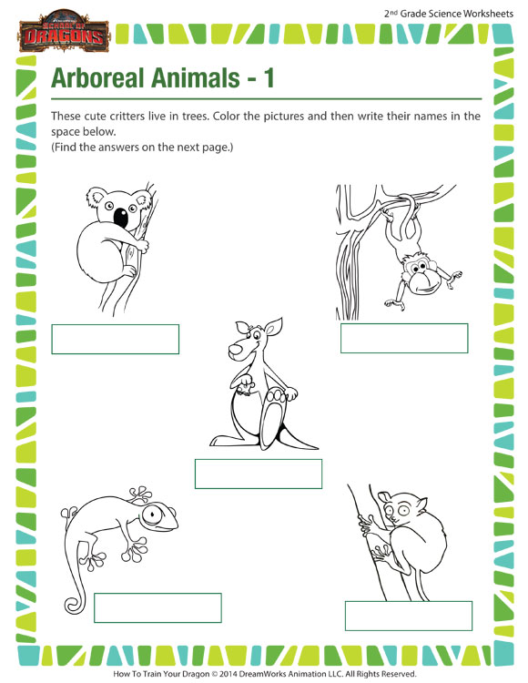arboreal animals 1 view worksheet 2nd grade kids sod. Black Bedroom Furniture Sets. Home Design Ideas