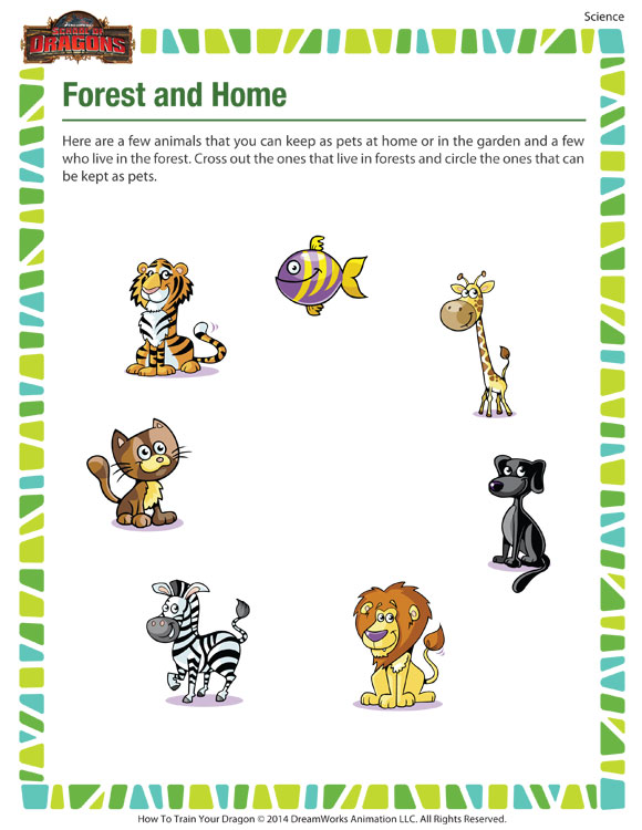 forest home kindergarten science worksheet animals sod. Black Bedroom Furniture Sets. Home Design Ideas