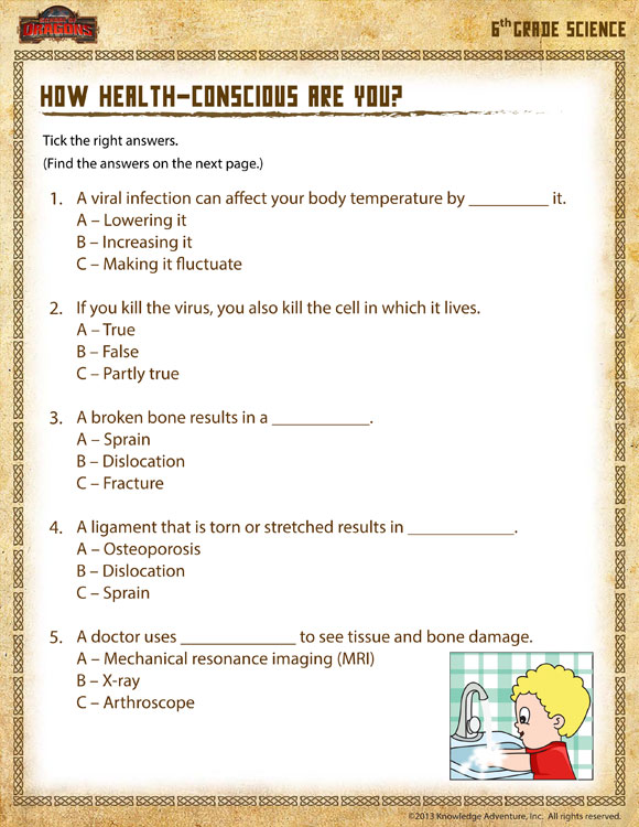 6th Grade Health Class Worksheet : How health conscious are you view th grade science