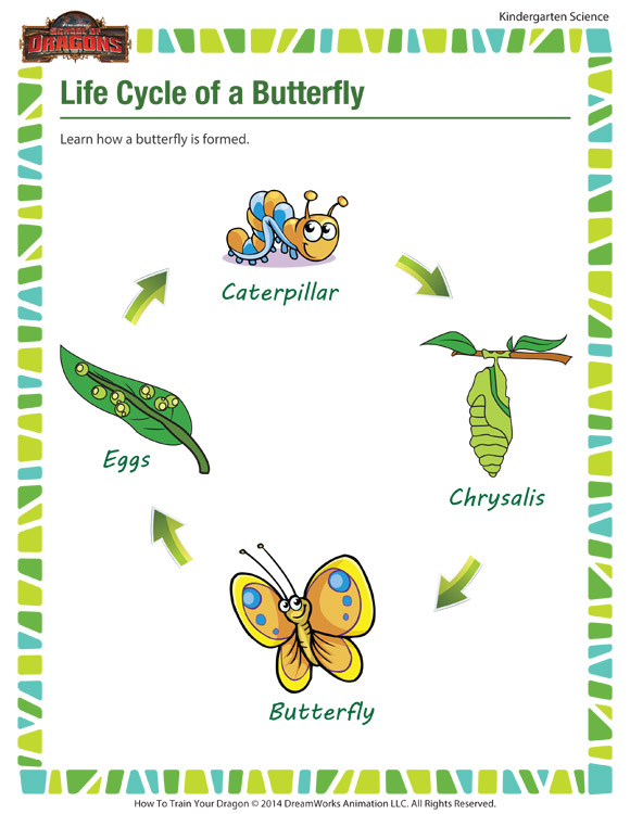 life cycle of a butterfly fun science worksheets school of dragons. Black Bedroom Furniture Sets. Home Design Ideas