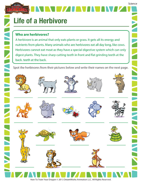Check out 'Life of a Herbivore', our free science worksheet for 4th ...