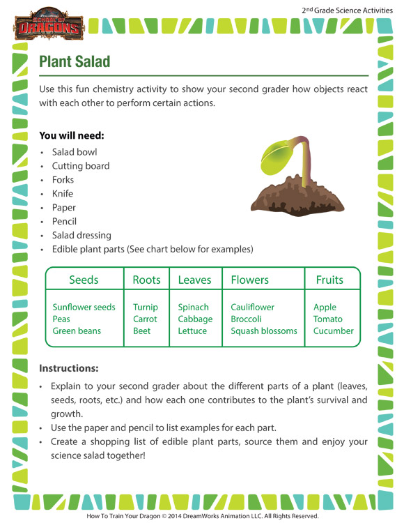 Plant Salad -  Pep-up your science lesson with this fun plants activity