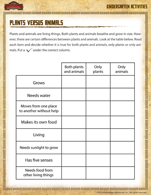plants versus animals view kindergarten science worksheet sod. Black Bedroom Furniture Sets. Home Design Ideas