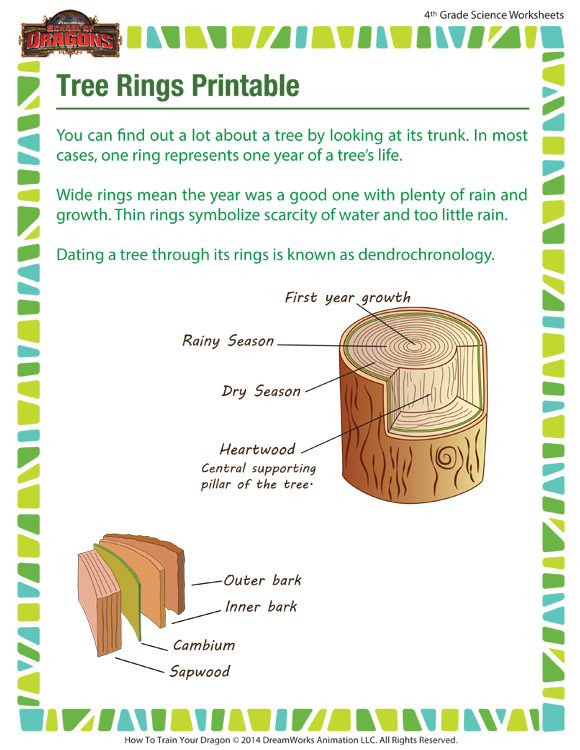 tree rings printable nature for 4th grade school of dragons. Black Bedroom Furniture Sets. Home Design Ideas