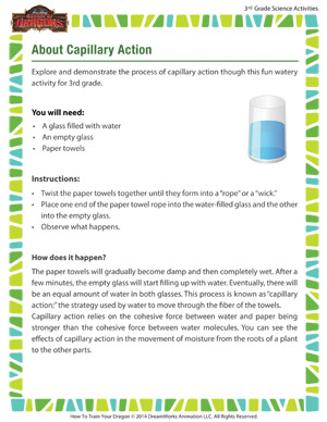 Download 'About Capillary Action' - Teaching Science to 3rd grade
