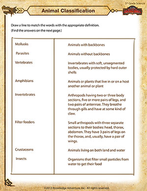 Printables Science Worksheets 5th Grade animal classification online science worksheet for 5th grade printable worksheet