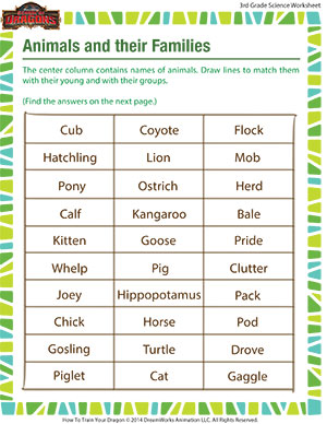 Worksheets Animal Science Worksheets animals and their families worksheet free grade 3 science printable 3rd animal online