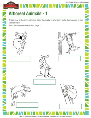 What Do Animals Eat? #1 | Worksheet | Education.com