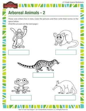 arboreal animals 2 grade 2 kids science worksheets sod. Black Bedroom Furniture Sets. Home Design Ideas