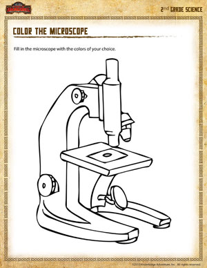 Color The Microscope 2 Science Worksheet For Second