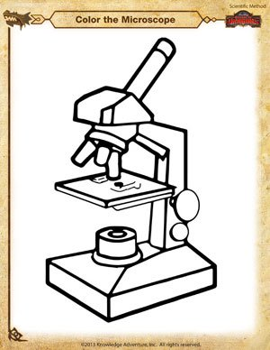 Printables Microscope Worksheets color the microscope scientific method worksheets school of microscope