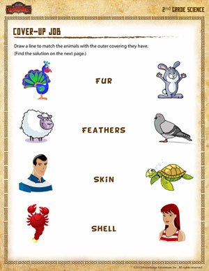 Cover up Job – Free 2nd Grade Science Worksheet - School of Dragons