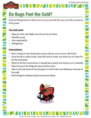 Download 'Do Bugs Feel the Cold?' - Fun 3rd Grade Life Science Activity about bugs