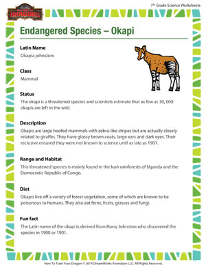 Printables Endangered Species Worksheets endangered species okapi middle school science worksheet okapi