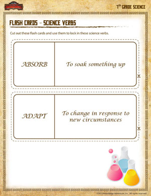Show What You Know on the Common Core Mathematics Flash Cards ...