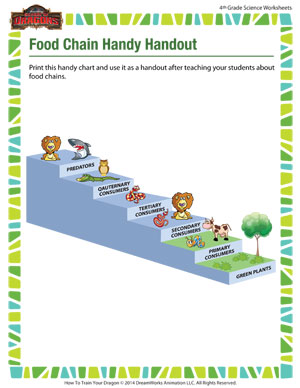 Food chain handy handout online science worksheets for grade 4 food chain handy handout science worksheet for 4th grade ibookread PDF