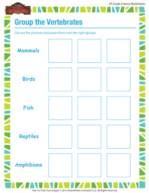 Group the Vertebrates – Biology for 6th Grade – School of Dragons