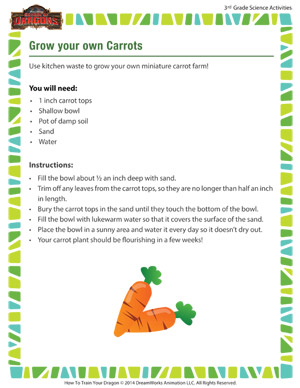 Download 'Grow your own Carrots' - 3rd grade science activity