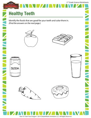 Healthy Teeth - Printable 2nd Grade Science Worksheet