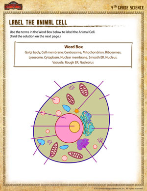 Worksheets Animal Cell Worksheet label the animal cell 4th grade science worksheet online cell