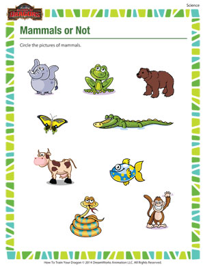 Printables Mammal Worksheets mammals or not science printable for school of dragons not