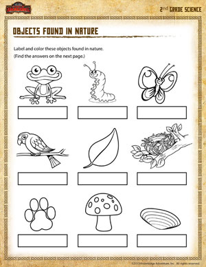 Printables Science Worksheet 2nd Grade objects found in nature 2nd grade science worksheet online printable second worksheet
