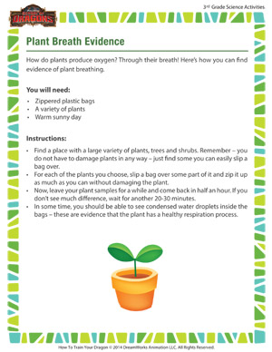 Download 'Plant Breath Evidence' - 3rd grade science activity