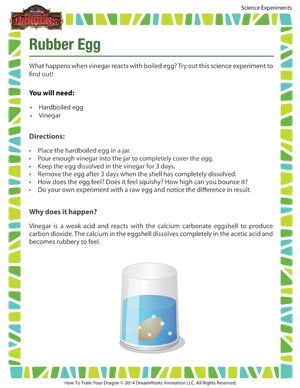 Rubber Egg - Fun Science Experiment for Kids