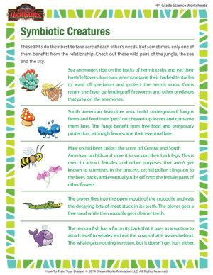 Symbiotic Creatures – Biology Worksheet for Fourth Grade – School ...