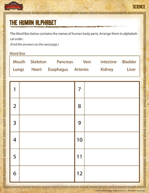 The Human Alphabet – Free 2nd Grade Science Worksheets