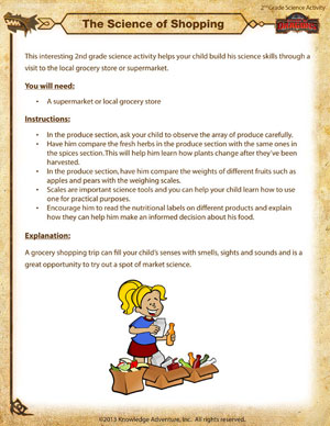 The Science of Shopping - Printable Second Grade Science Activity