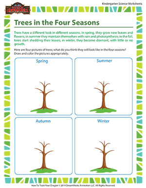 math worksheet : trees in the four seasons  science for kindergarteners  school  : Seasons Worksheet Kindergarten