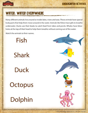 ... Water Everywhere - Kindergarten Science Worksheet - School of Dragons