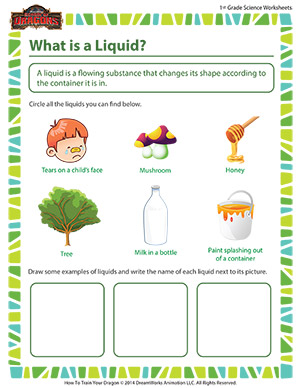 Printables 1st Grade Science Worksheet what is a liquid first grade science online school of dragons worksheet for 1