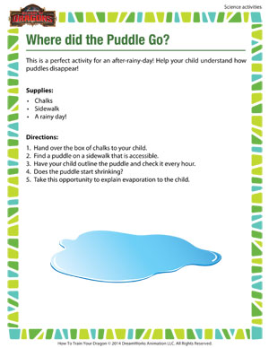 Where Did the Puddle Go? - 2nd grade science activity