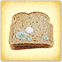 Grow your Own Bread Mold - Free Science Activity for Grade 6