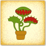 Nurture an Insectivorous Plant - 5th Grade Botany