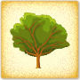 Trees in the Four Seasons - Learn more about trees
