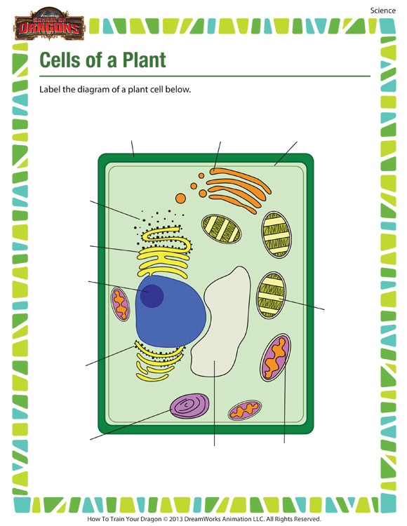 Cells of a Plant - Printable science worksheets for 5th grade