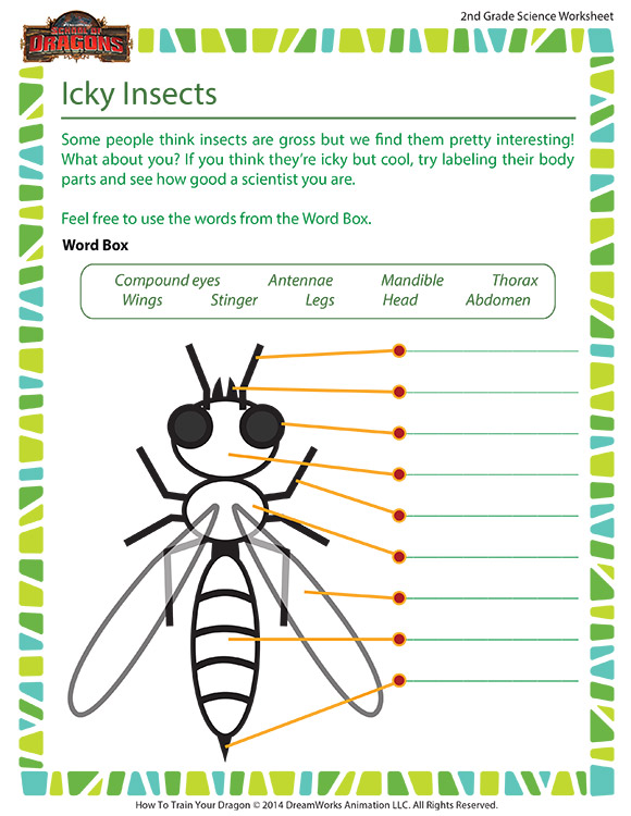 Icky Insects Worksheet - 2nd Grade Life Science - School ...