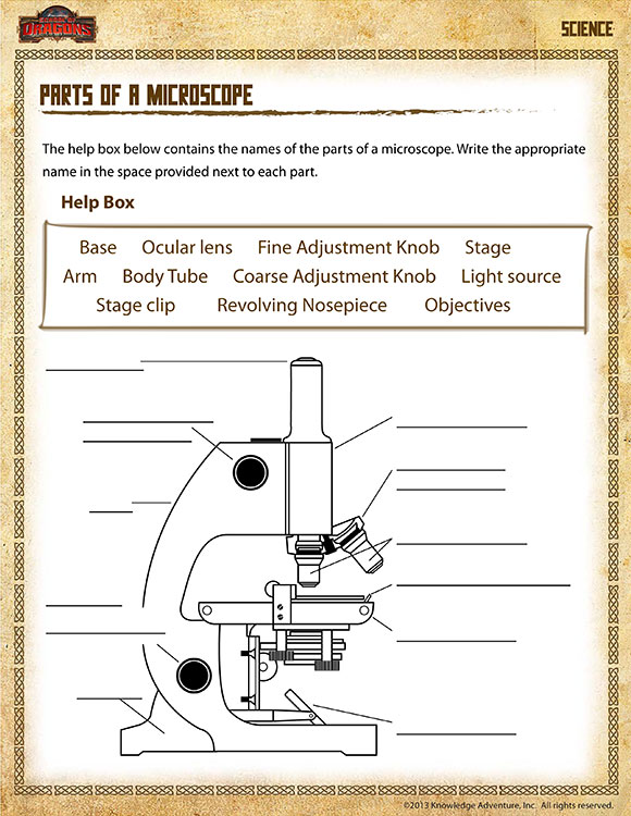 Parts of a Microscope - Free Science Worksheets