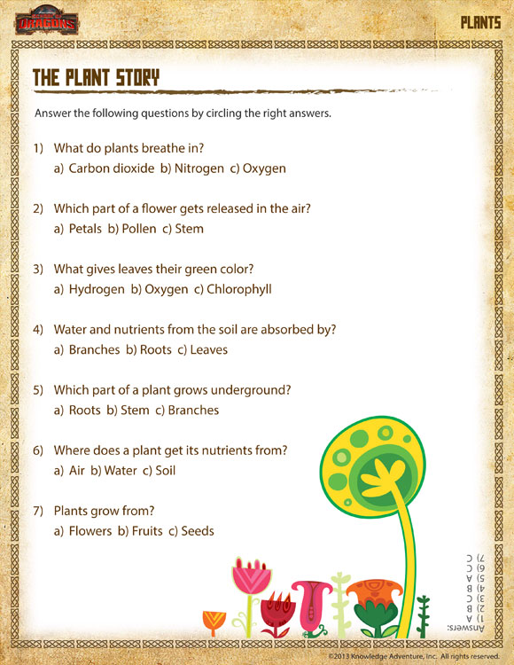 the plant story view free printable plant worksheet for 1st grade school of dragons. Black Bedroom Furniture Sets. Home Design Ideas